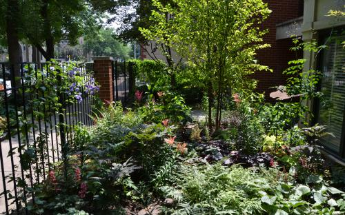 Sheffield Music Festival Garden Walk: 49 Years And Counting