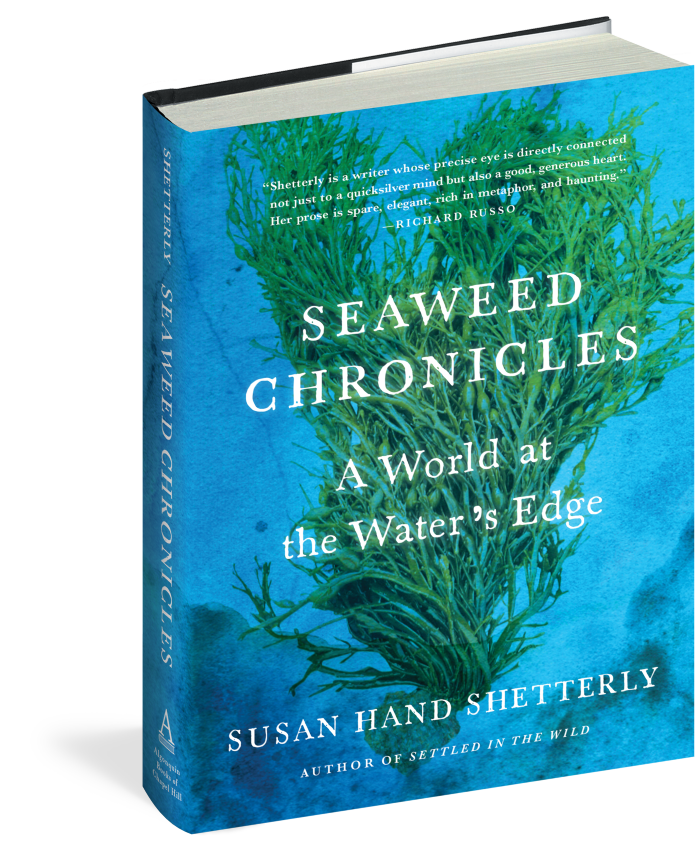 Seaweed Chronicles And Trout Tales The Mike Nowak Show