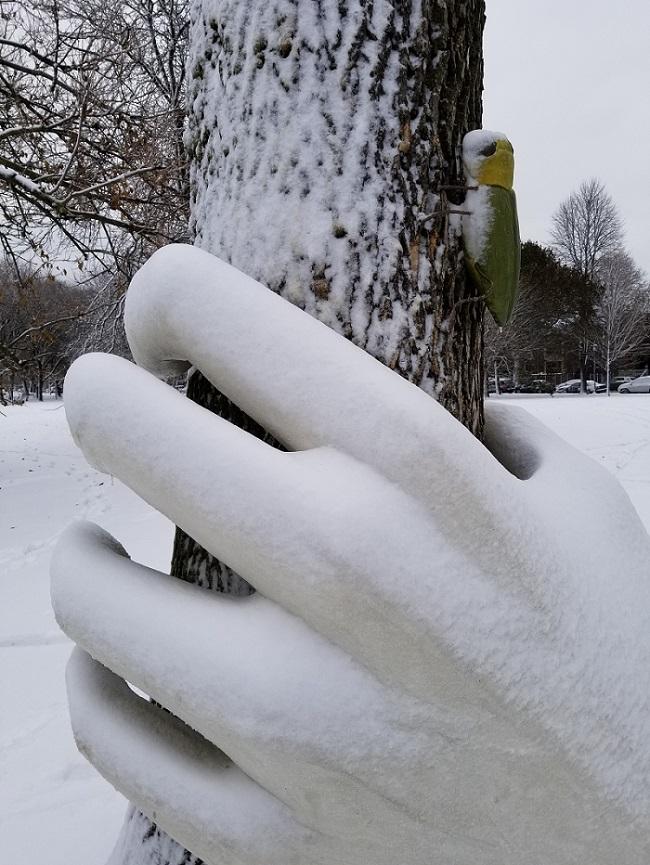 """Helping Hand"" Saving Trees"
